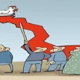 قیمت مصوب مرغ افزایش یافت