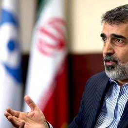 سخنگوی سازمان انرژی اتمی دچار حادثه شد