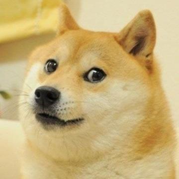 توکن دوج اصلی به قیمت بیش از ۴ میلیون دلار به فروش رفت