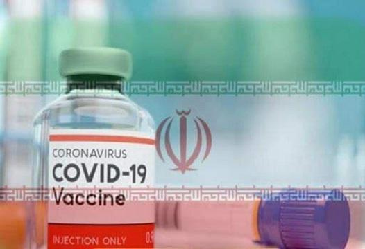 تولید صنعتی واکسن پاستوکووک شهریور آغاز می شود