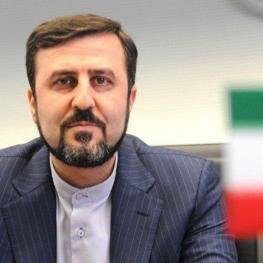 غریب آبادی: تفاهم اخیر ایران و آژانس به طور کامل و ظرف زمان توافق شده اجرا شد